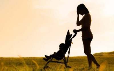 Family Violence & Understanding Family Law